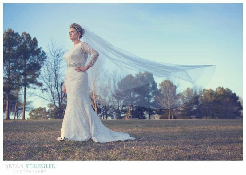 Westcott Rapid Box Octa Review wedding dress and vail