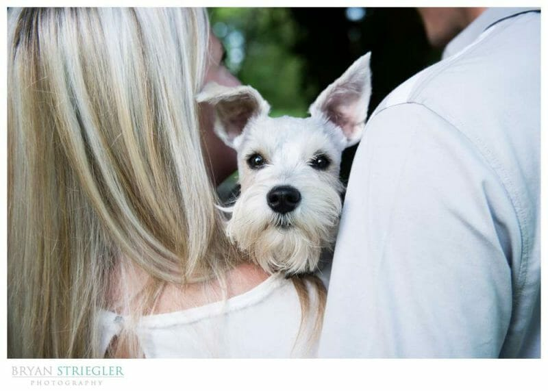 Using Lightroom Keyword tags for Wedding Photographers
