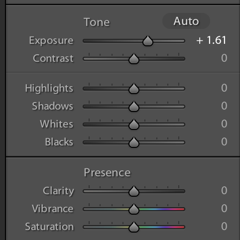 Basic settings in Lightroom for beginners