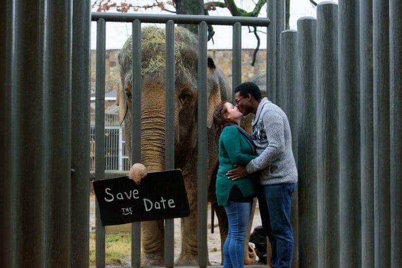Arkansas engagement photo at Little Rock Zoo