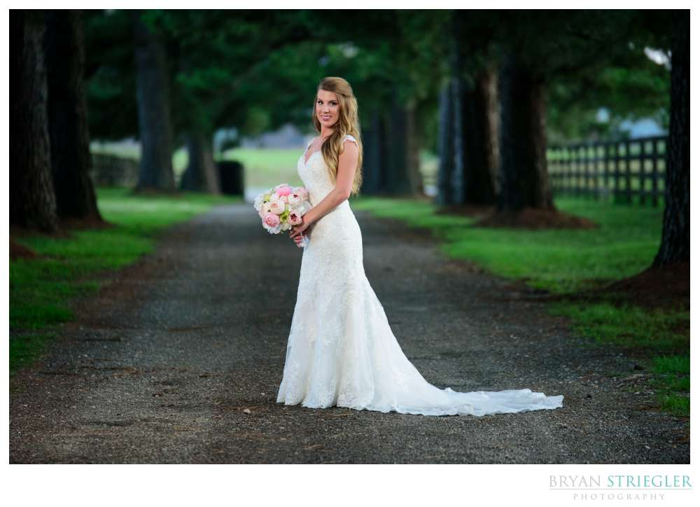 tree lined road for bridal portrait
