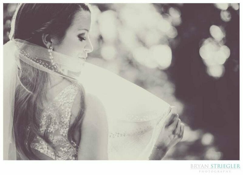 bridal portrait holding vail up