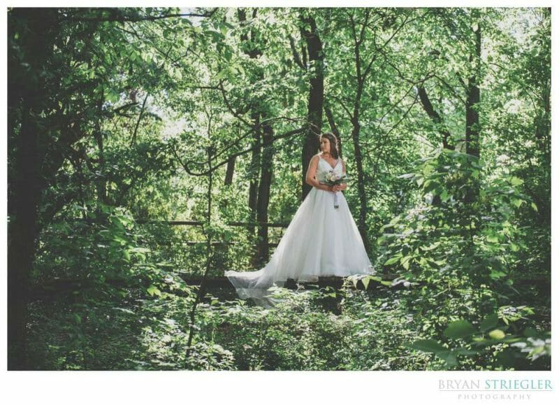 bridal portrait surrounded by trees