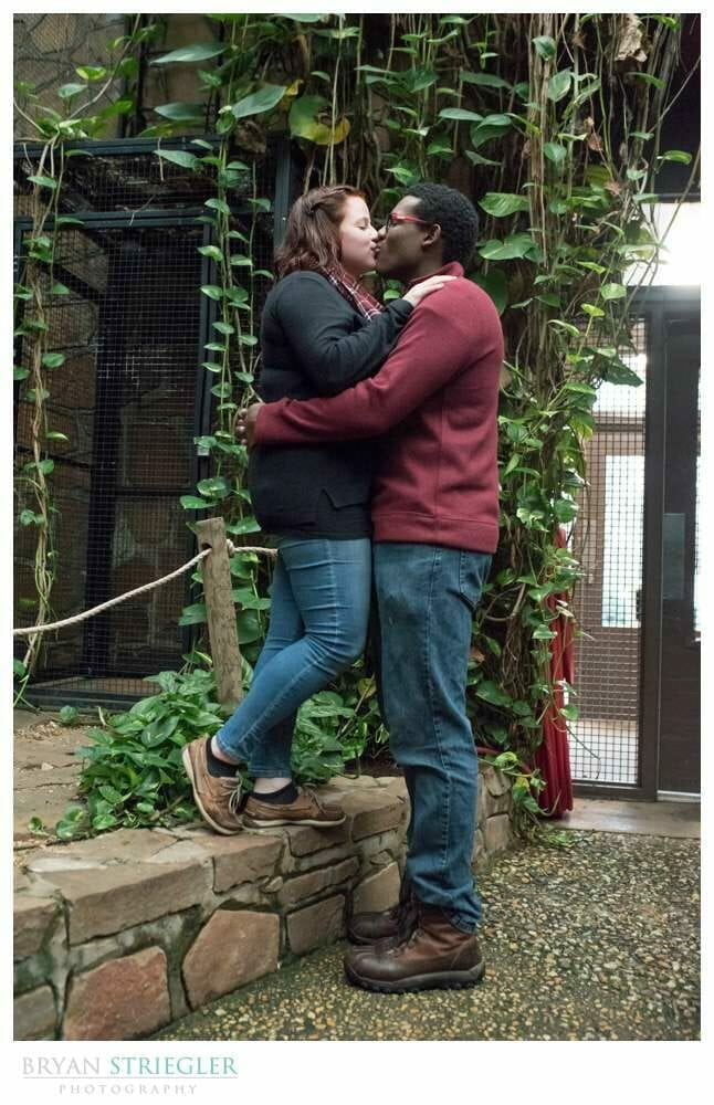 engaged couple at Little Rock Zoo