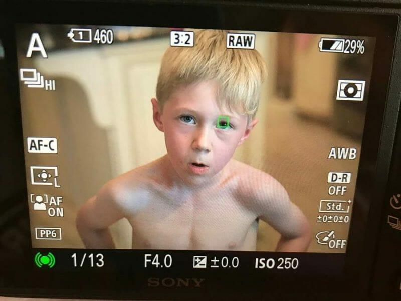Sony back of camera screen