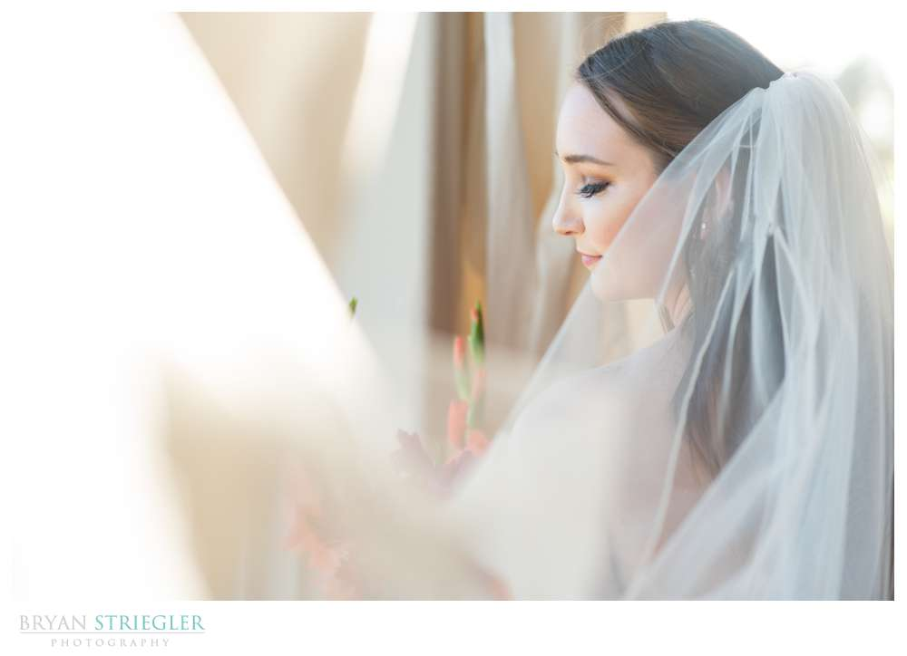 bride covered in veil