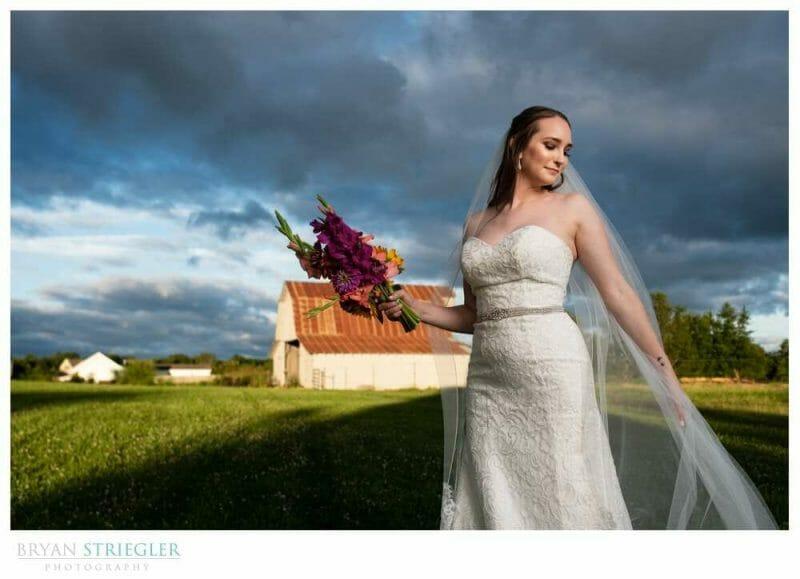 bridal portrait with dark skies