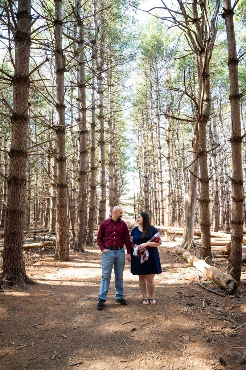amazing tall trees with couple at Burr Oak Woods